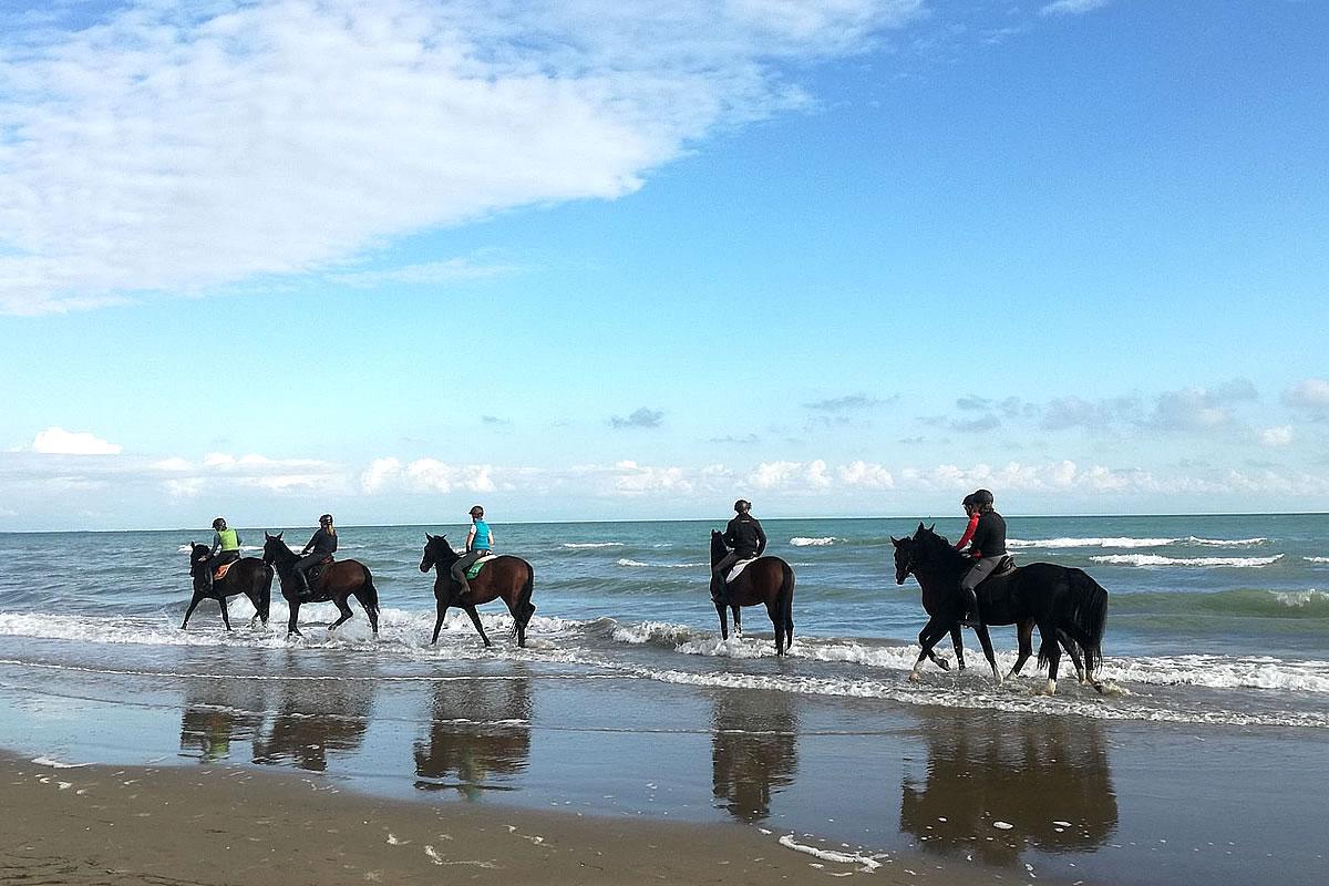 Passeggiata in spiaggia a cavallo